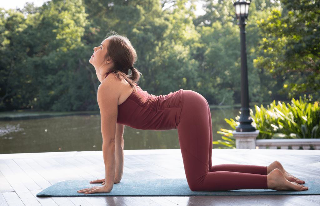 Yoga challenge pose: cow pose